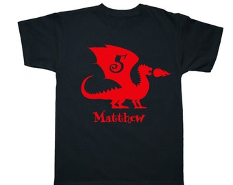 Personalized Dragon Birthday Shirt Fire Breathing Dragon - any age and name - pick your colors!