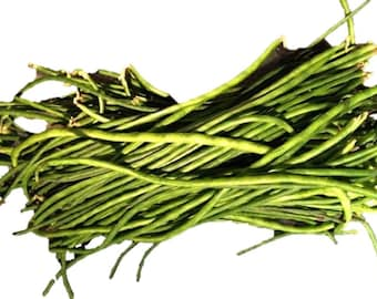Black Yardlong Bean (25, 50, 100 seeds ) Snake Asparagus Chinese Long #159