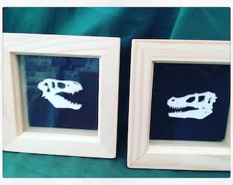 RAWR!! Dinosaur Skulls Acrylic Collage Picture 3D Box Frame