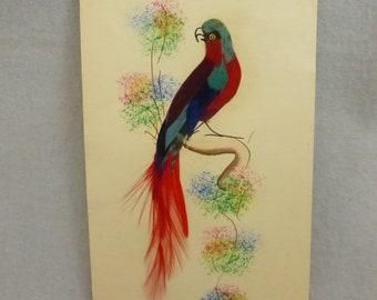 Vintage Feather Art Mexican Folk Art Card