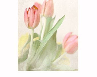 Tulip Photo, peach tulips - spring flower photo, spring,  pretty flower print, cottage home decor, still life, flowers, floral
