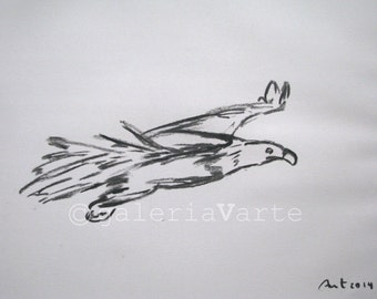 original charcoal drawing  - hawk - europeanstreetteam