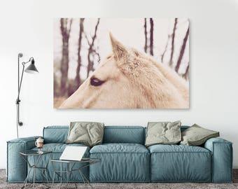 "large canvas wall art, large wall art, large colorful wall art, large wall art canvas, large art on canvas, horse photography, art - ""Alert"""