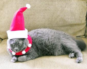 Christmas Dog or Cat Pet Santa Costume Small - Pet Santa Suit -Free Shipping