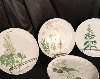 French Botanical dinner scalloped dinner plates