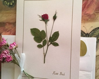 Pressed flowers card greeting card red rose card for birthday, anniversary, mothers day, blank 5x7 card, pressed flower card for  framing