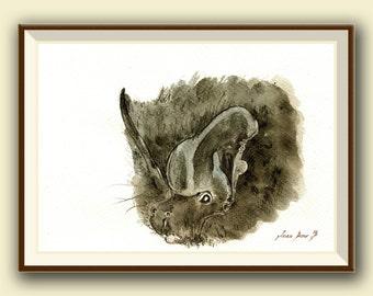 The barbastelle (Barbastella barbastellus)  -Bat art -  Original watercolor painting- Juan Bosco