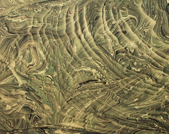 Marbling Paper Art Reptiles role marbled