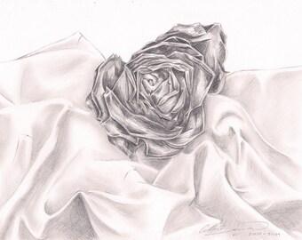 Original drawing Sleeping Rose
