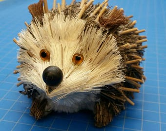 SPC Natural Hedgehog (014)