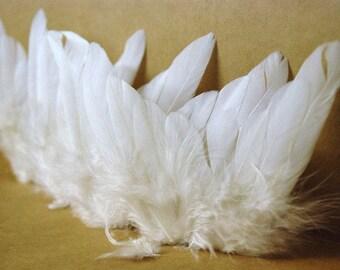 ANGEL WINGS 10 x 8cm