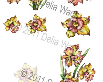Peach Daffodil Note  - Cut and Create - Bits and Pieces included- Printable PDF