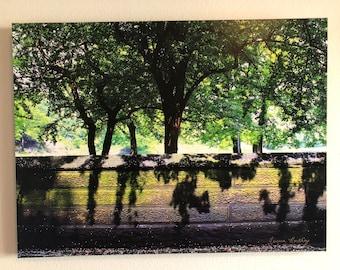 Central Park print on Canvas