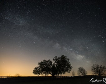 A Tree and the Milky Way - Astrophotography - Milky Way Print - Night Sky, Star Photography - Farm Art - Galactic Core