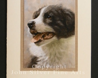 Border Collie Dog Portrait Hand Made Greetings Card. From Original Paintings by JOHN SILVER. GCBC006