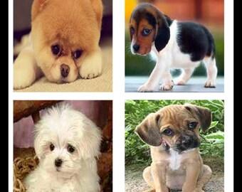 Digital Downloads - Scrabble Tiles - Scrabble Tile Images - Scrabble Tile Jewelry - Puppies - Puppy Jewelry - DDP36