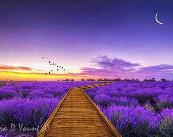 Purple Lavender, Field of Lavender, Purple Sunset, Wooden Pathway, Moonlit Field, Flower Art Print, Nature Wall Art, Fine Art Photography