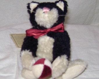 Boyd's Sylvester Cat