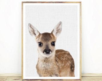 Baby Deer Print, Woodland Animal, Nursery Decor, Printable Digital Download, Forest Animals, Large Poster, Baby Deer Nursery, #056