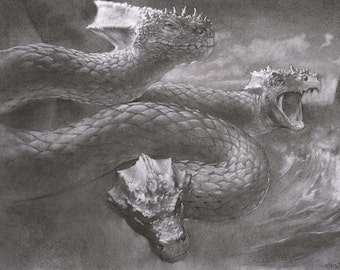 Hydra - the mythical serpent from ancient Greek mythology - 12 x 18 art print of a charcoal drawing