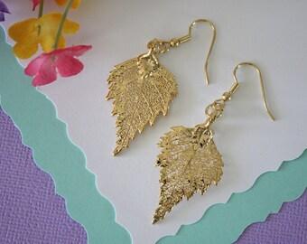 Gold Leaf Earrings, Birch Leaf, Real Leaf Earrings , 24kt Gold, Nature, Organic Earrings, LESM194