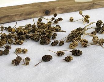 Mini pinecones 200+pcs, light gold colored, Alder tree pinecones Christmas decor Vase filler Wreaths Fairy Woodland