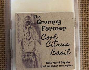 Cool Citrus Basil soy wax tart