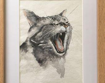 Ferocious yawn