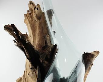 Teak Root Vase - XL
