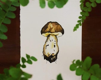 Toadstool #3 • PRINT from an original watercolour by Laura Coughlan