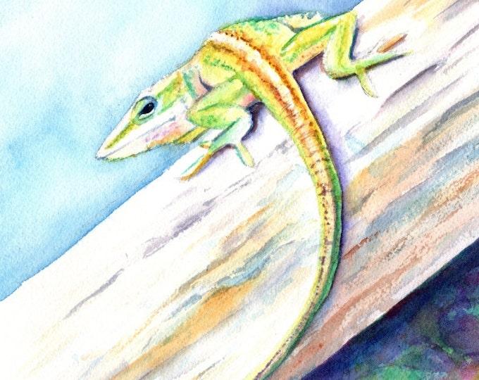 Lizard Original Watercolor Painting from Kauai Hawaii anole chameleon Hawaiian children's art animal paintings Hawaiian decor gecko