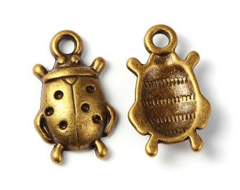 Set of 2 bronze charms - dimensions 17 x 11 (BR024)