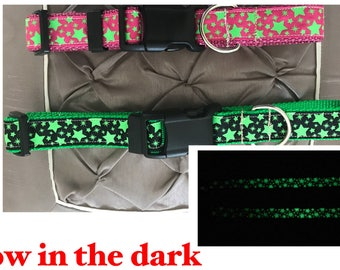 Be seen at night collar!