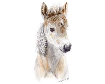 Baby Horse Art, Farm Nursery Print, Farm Animal, Horse Print, Baby Animal Print, Horse Nursery, Baby Farm Animal, Nursery Art, Farm Print