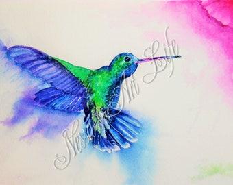HUMMINGBIRD, Watercolour Mounted Print