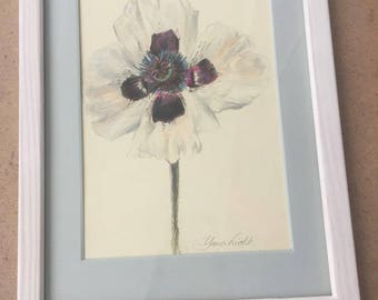 White poppy flower drawing colored pencil drawing framed
