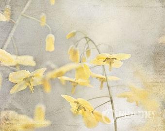 Gris, jaune & fleurs jaunes photographie Art mural, printemps Decor, impression de photos de fleurs, Art jaune, fleur jaune