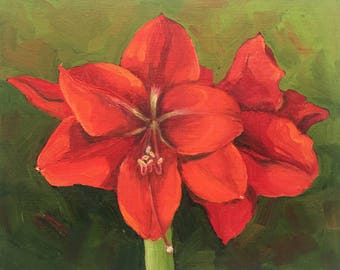A small painting of a red Amaryllis in Full Bloom by Dotty Hawthorne.  8x10 oil on linen panel