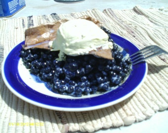 faux slice of blueberry pie a a mode.