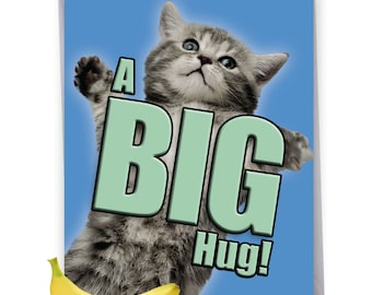 J6614AGWG Get Well Greeting Card: Cat A Big Hug Ft. Cats Holding Their Arms Wide to Show You How Much They Want To Hug You, With Envelope