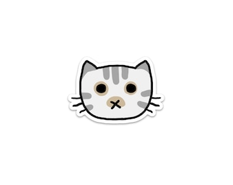 Dilute Tabby Cat Sticker, Phone Sticker, Cat Laptop Sticker, Car Sticker, Bumper Sticker, Vinyl Sticker, Cute Cat, white tabby, color point