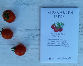 Red Cherry Tomato seeds diy garden kit Kids toys outdoor games grow your own heirloom tomato seeds veggie seeds for kids organic seeds