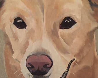 Pet Portraits , original oil paintings of your pet,pet commisions,dog portraits