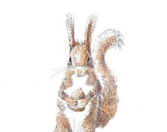 Squirrel Print, Squirrel Watercolour Print, Animal Art, Farm animal, Squirrel Art, Cottage Art, Nursery decor, Gift