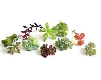 Faux succulents, mini succulents, artificial succulent, succulent plants, succulent cutting, boutonniere, succulent terrarium, wedding favor