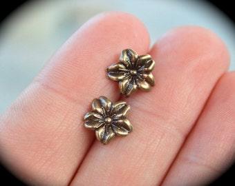 Cherry Blossom Earrings in Bronze