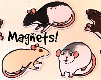 Cute Fancy Rat Decorative Magnets! Pack of 8 - Custom Made to Order