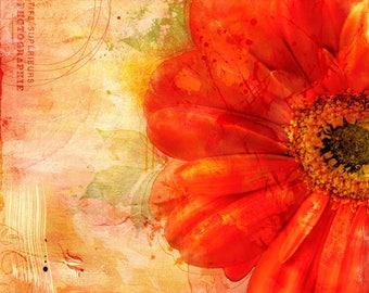 Orange Floral on canvas