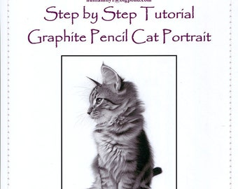 Step by Step Art Tutorial - A Cat Portrait in Graphite Pencil by Karen Hull