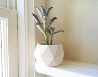 Geometric planter, desk accessory